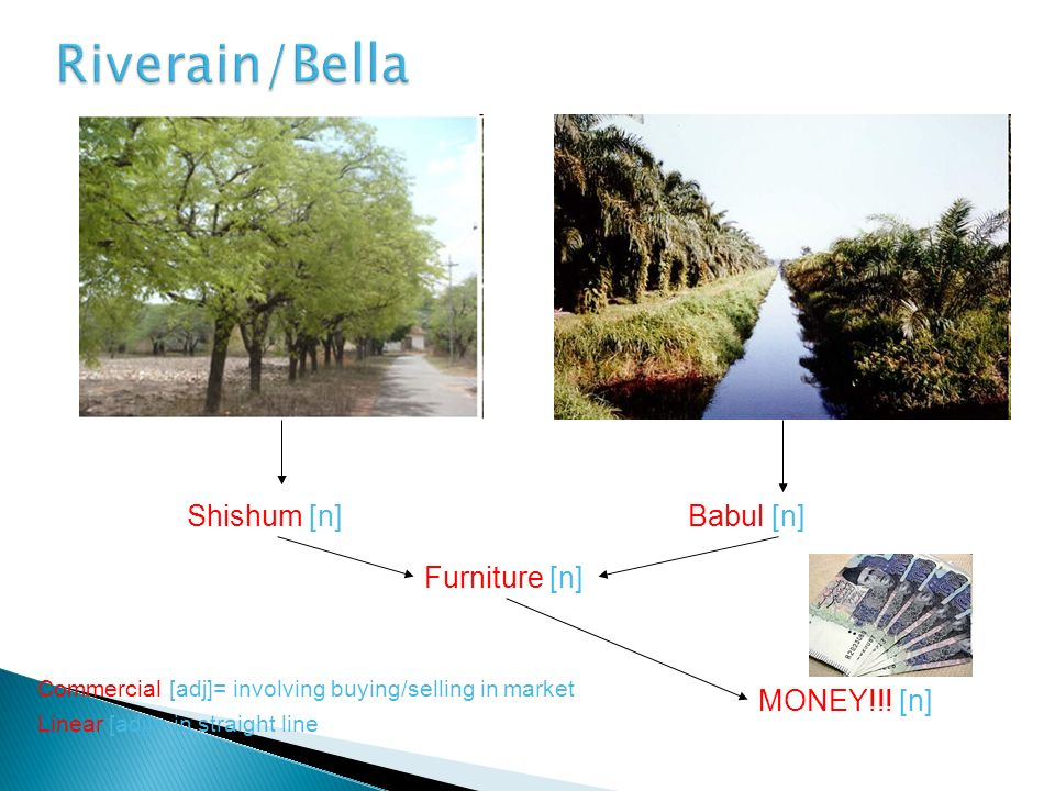 Riverain/Bella Shishum [n] Babul [n] Furniture [n] MONEY!!! [n]